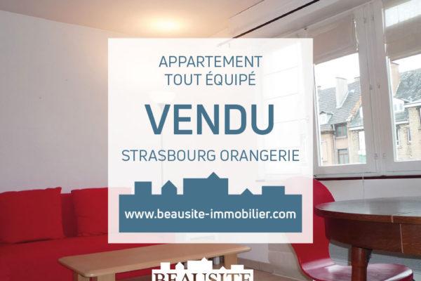 VENDU Charmant 2P - Orangerie / rue Geiler