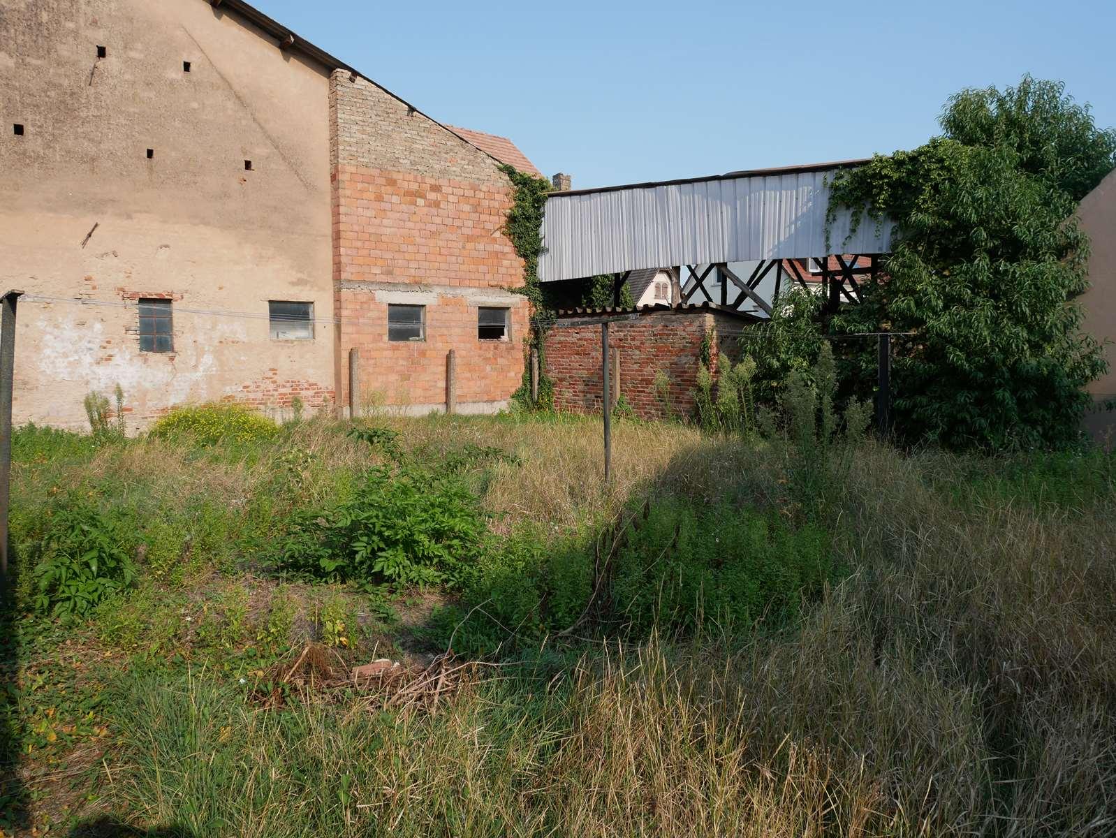 [Farmer] Une superbe maison alsacienne dans un corps de ferme - Weyersheim - nos ventes - Beausite Immobilier 11