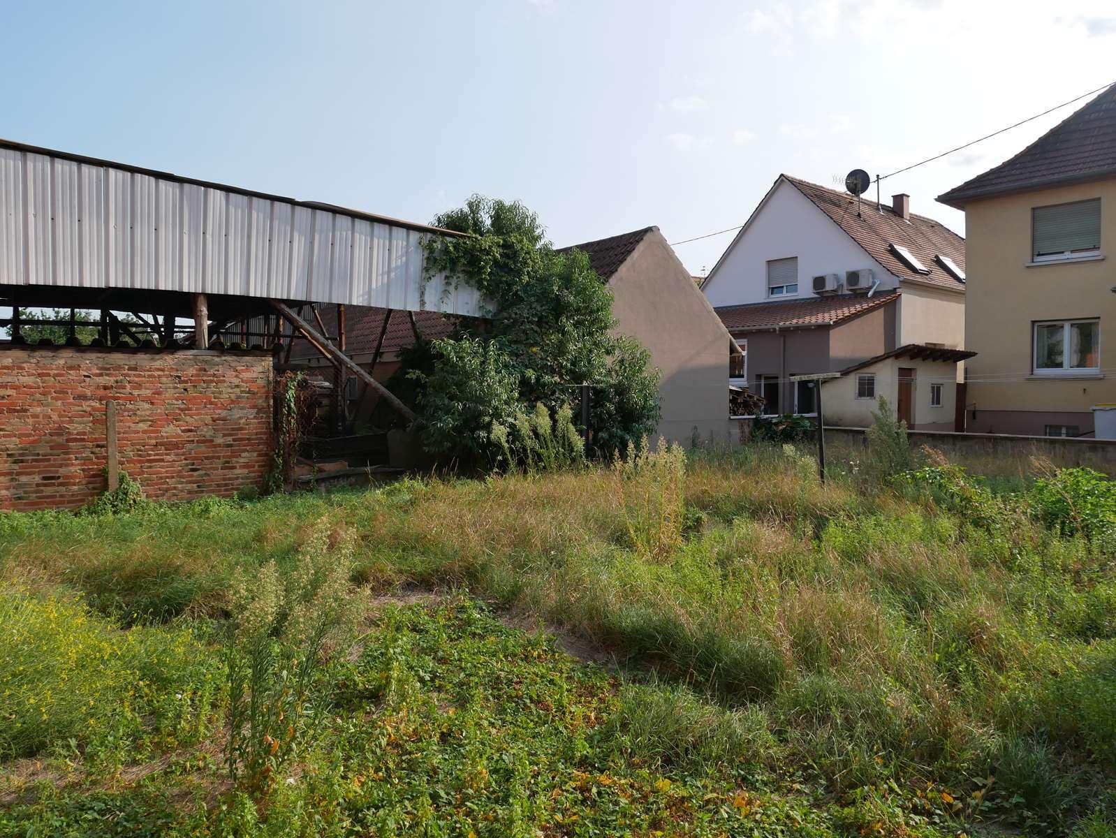 [Farmer] Une superbe maison alsacienne dans un corps de ferme - Weyersheim - nos ventes - Beausite Immobilier 12