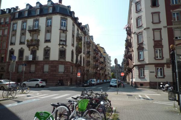 Superbe appartement 3/4P refait à neuf !