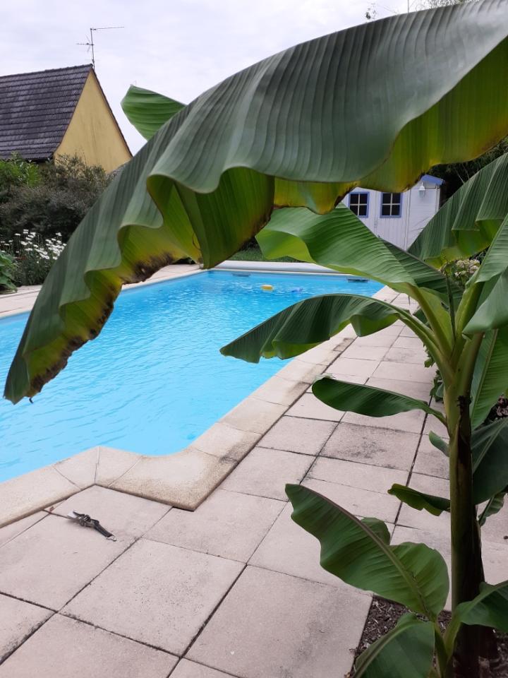 [Haddock] Une superbe maison avec piscine en plein cœur du village - Weyersheim - nos ventes - Beausite Immobilier 11
