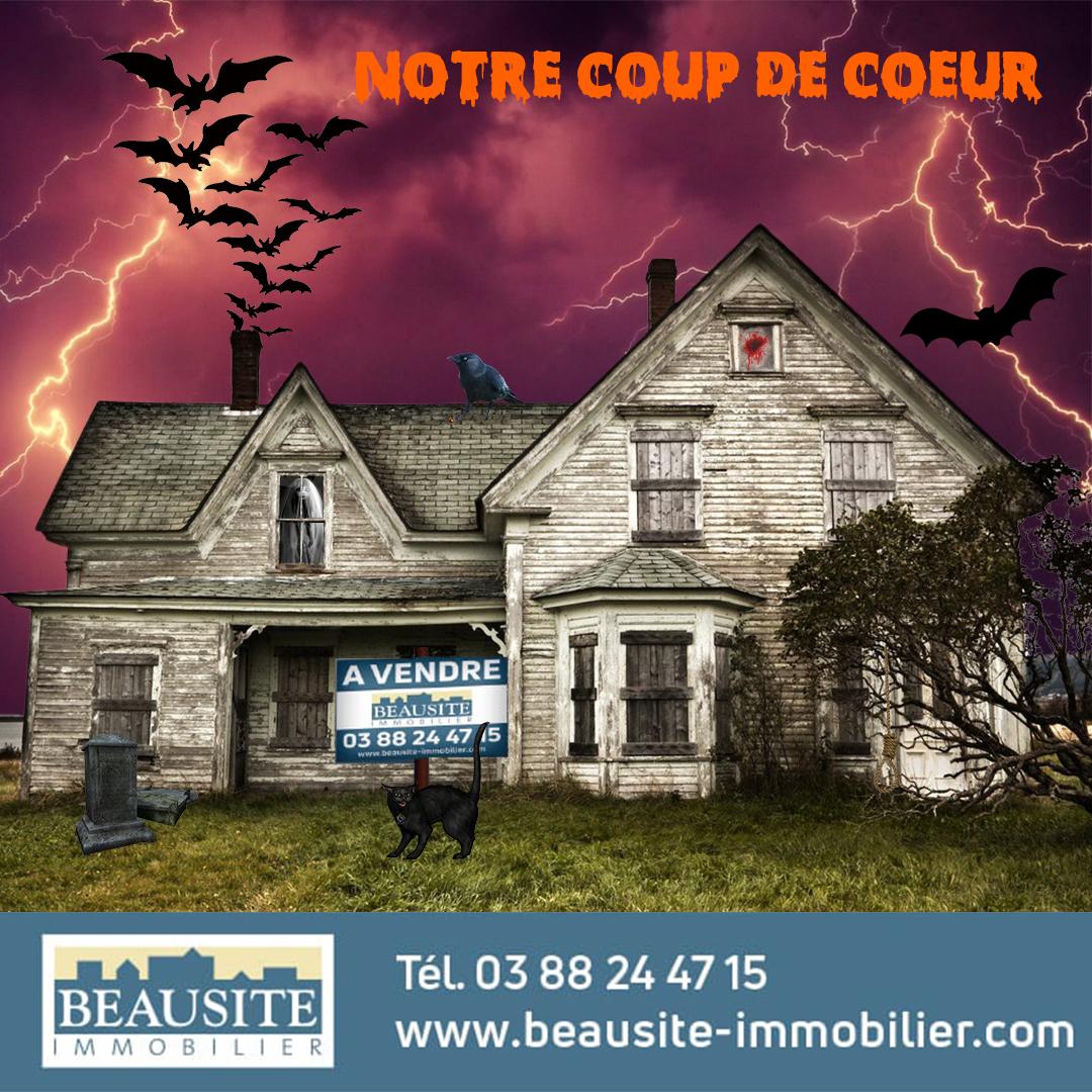 [Halloween] Un manoir au cœur de Strasbourg et son cimetière vivifiant - nos locations - Beausite Immobilier 1