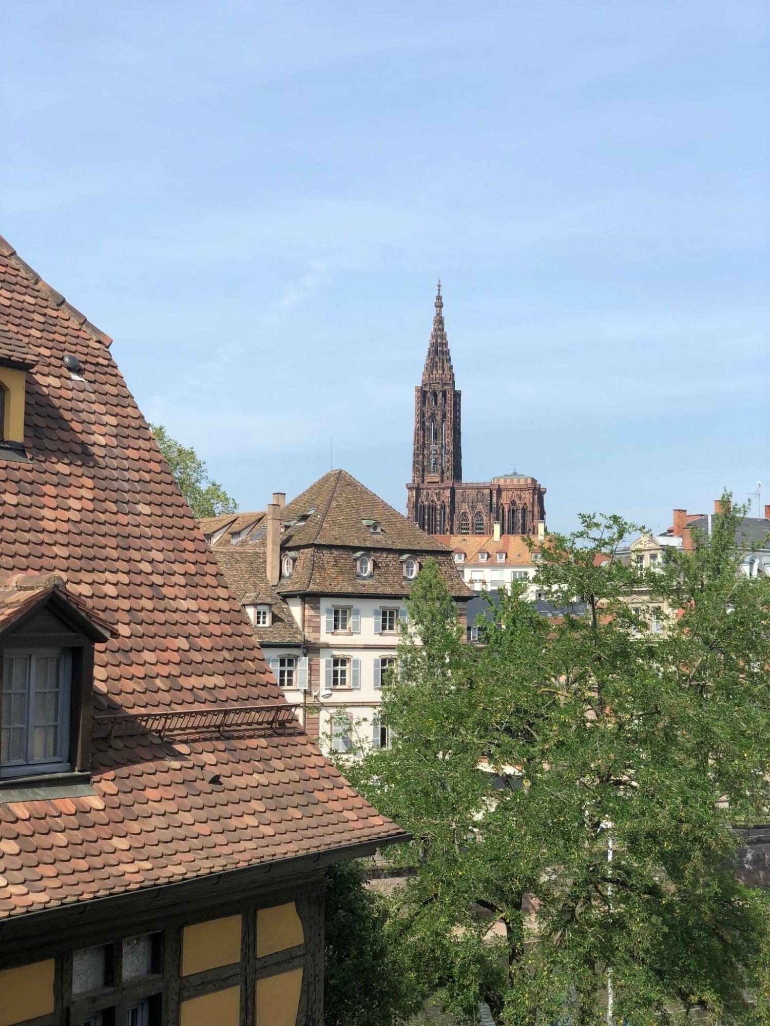 [Gold] Un appartement lumineux avec vue sur la Cathédrale - Strasbourg Centre - nos ventes - Beausite Immobilier 4