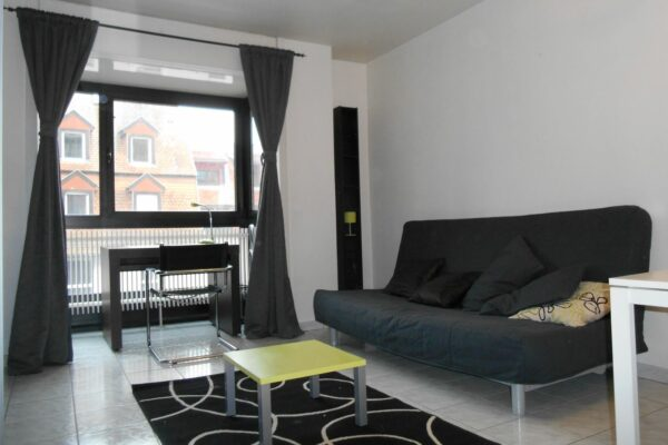 [Anthracite] Beau studio meublé - Krutenau / rue de l'Abreuvoir
